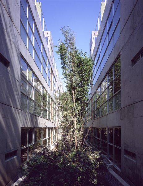 Edificio Tornel